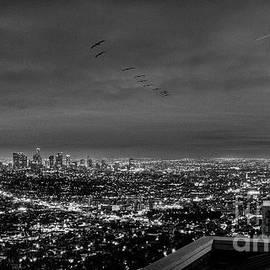 LA Cityscape BW by David Zanzinger