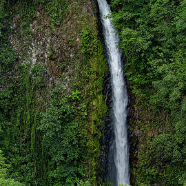 La Fortuna Waterfall by Stephen Anderson