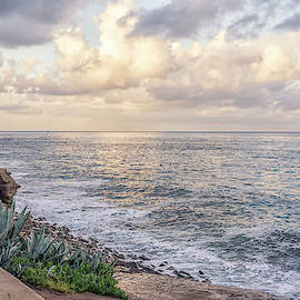 La Jolla Beauty, December 24th by Joseph S Giacalone
