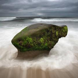 La Jolla Rock and Waves by William Dunigan