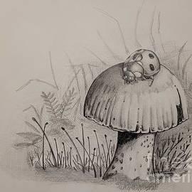 Ladybug on a Mushroom by Angrulla MF