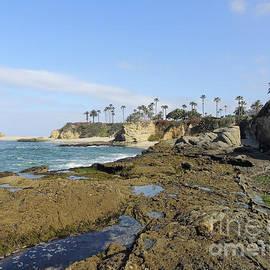 Laguna Landscape by Robert Ball