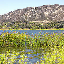 Lake Hodges with Mountain View by Alison Frank
