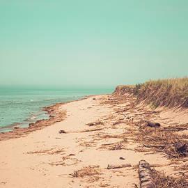 Lake Michigan Shoreline  by Enzwell Designs