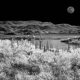 Lake Pleasant Day and Night by Cathy Franklin