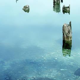 Lake Wakatipu, the Remains by Imi Koetz