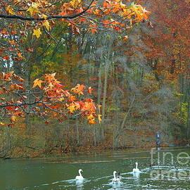Lakeside Beauty on an Autumn Day by Dora Sofia Caputo