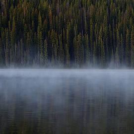 Lakeside Morning by Michael Morse