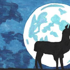 Lama by Moonlight by Ali Baucom