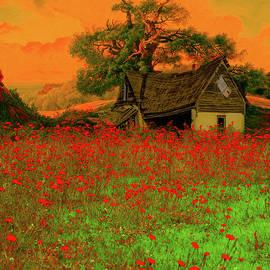 Landscape In Orange by Jeff Burgess
