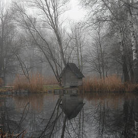 Landscape of a beautiful fishing lake. Winter morning, a mist on the lake, photo series 10. by Akos Horvath