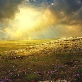 Landscape Scene Near Pearstonhurst. L A S by Gert J Rheeders