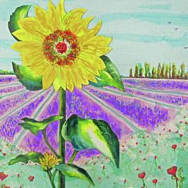 Sun Flowers Lavender And Red Poppy by Janie Easley Ballard