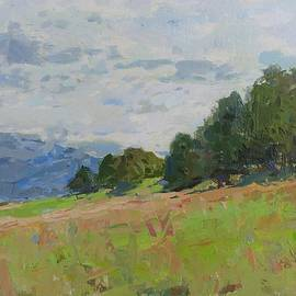 Landscape.after rain  by David Beglaryan