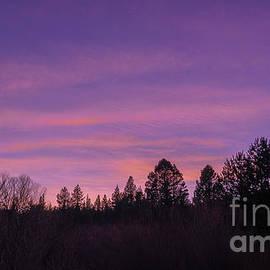 last sunset of 2020 at El Dorado National Forest by PROMedias Obray