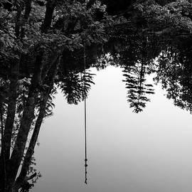 Last Swing of Autumn BW by Benjamin Roberts