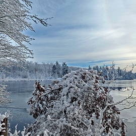 Last Year Snow by Lyuba Filatova