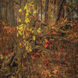 Last Yellow of Fall by Trey Foerster