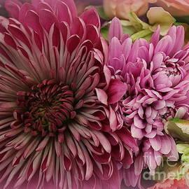 Beautiful Autumn Blossoms by Dora Sofia Caputo