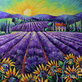 LAVENDER FIELDS AND SUNFLOWERS - LIGHTS OF PROVENCE palette knife oil painting Mona Edulesco by Mona Edulesco