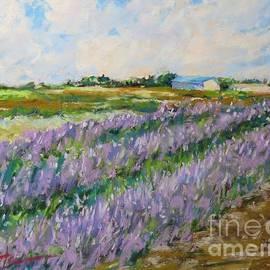 Lavender Fields by Jean Costa
