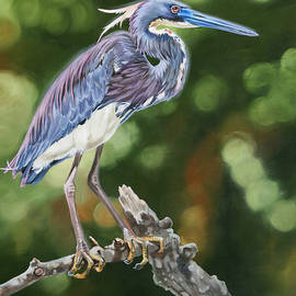 Le Petite Garcon Bleu by Phyllis Beiser