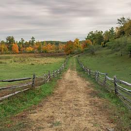Leading into Autumn by Sylvia Goldkranz