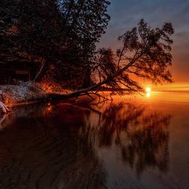 Leaning tree Sunrise by Ron Wiltse