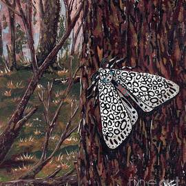 Leopard Moth in the Woods by Angrulla MF