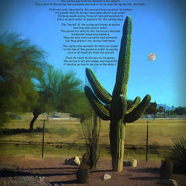 Lessons From A Cactus by Jennifer Stackpole