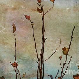 Letting Go of Autumn by Elaine Teague