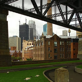 Life From Beneath the Bridge - Sydney by Siene Browne