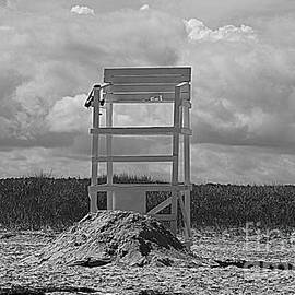 Life Guard  Chair and Back Pack by Lennie Malvone