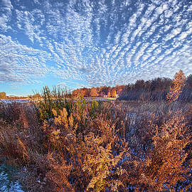 Life is a Balance by Phil Koch