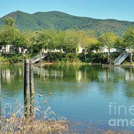 Life On The Nehalem River by Beautiful Oregon