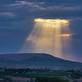 Light from heaven by Lynn Hopwood