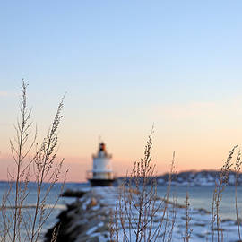 Lighthouse in the Distance by Lisa Cuipa