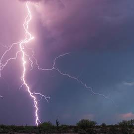 Lightning Dancer by Rick Furmanek