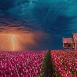 Lightning Field by Ally White