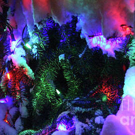 Lights_1206 by Gary Gingrich Galleries