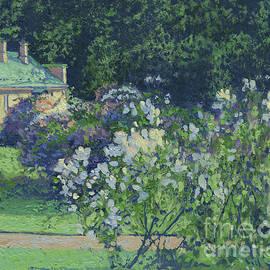 Lilac in Tzaritzino park by Simon Kozhin