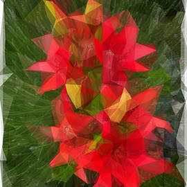 Lilium Blackout Flower Abstract by Jerry Abbott