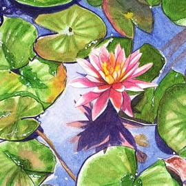 Lily in the pond by Swati Singh
