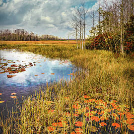 Lily Pads Under the Clouds in Autumn by Debra and Dave Vanderlaan