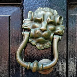 Lion Head Door Knocker by Lyuba Filatova