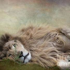 Lion King Resting by Eva Lechner