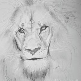 Lion by Leann Horrocks
