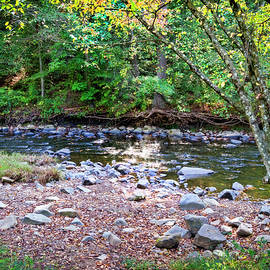 Little Gunpowder Falls - Beginning Autumn by Brian Wallace