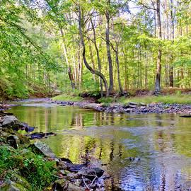 Little Gunpowder Falls River Bank by Brian Wallace