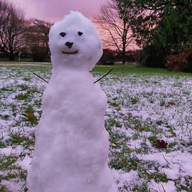 Little Snowman At Sunset In Devon by Richard Brookes